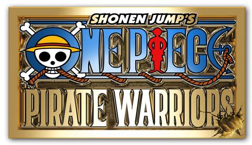 One Piece Pirate Warrior