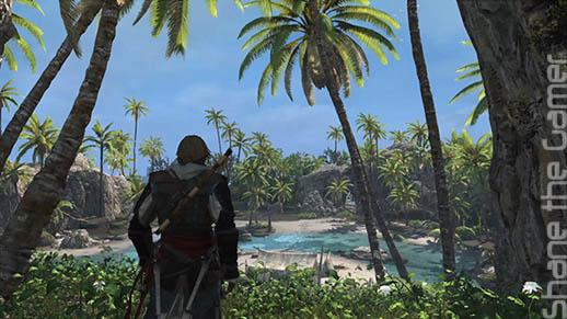 Assassins Creed 4 Black Flag Next Gen Review