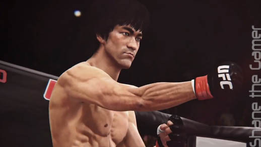 EA Sports UFC 2014