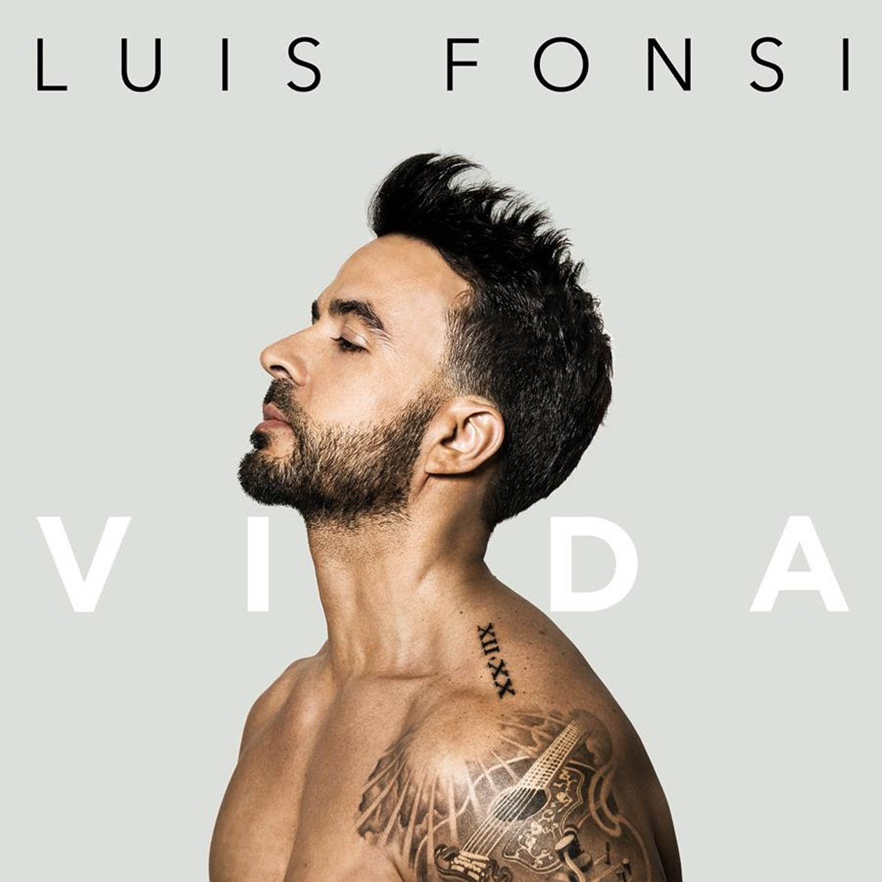 Luis Fonsi - Vida