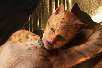 Cats - 2019