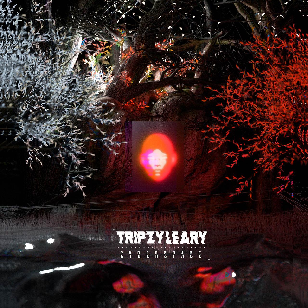 Tripzy Leary - Cyberspace album