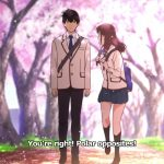 I Want to Eat Your Pancreas - Anime